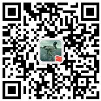 微信小程序免费转小程序码方法!  免费 小程序 工具 第2张