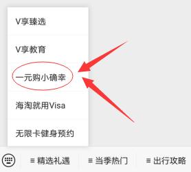 Visa信用卡,可以1元购买各类视频会员,可变现!  Visa信用卡 视频会员 免费赚钱 第1张